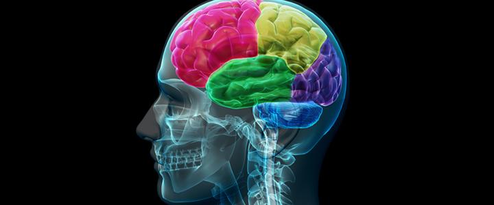 Physical and Neurological